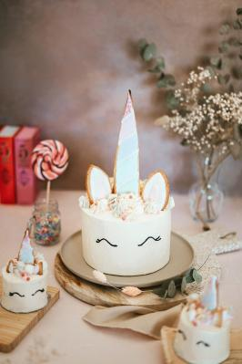 Photographe culinaire landes unicorn cake patissier